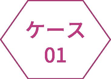 icon_case01