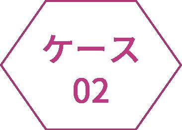 icon_case02