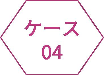 icon_case04